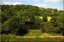 ST6965 : The River Avon by Corston by Steve Daniels