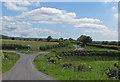 SE6885 : Staggered crossroads, Kirkdale by Pauline E