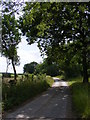 TM2665 : Saxtead Bottoms looking towards Peppers Wash by Adrian Cable