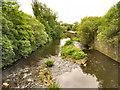 SD7910 : River Irwell from Bury Bridge by David Dixon