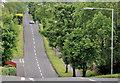 J2459 : The Carnreagh Road, Hillsborough by Albert Bridge