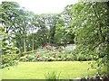 NY9984 : A very pretty garden by Bill Henderson