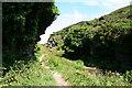 SX0789 : Tintagel: path to the coast by Martin Bodman