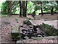 SJ8955 : Looking over Gawton's Well by Jonathan Kington