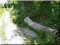 SO3383 : Carved tree trunk beside the path to Bury Ditches hillfort by Jeremy Bolwell