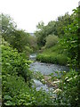 SK3974 : River Rother by railway bridge by Andrew Hill
