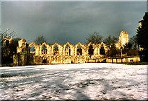 SE5952 : St Mary's Abbey by David Dixon