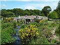 SX6478 : Bridges at Postbridge by Chris Allen