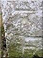 NZ1619 : Bench Mark, Langton Farm by Maigheach-gheal