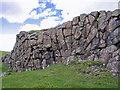 NG3734 : Rock outcrop by Richard Dorrell