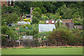 TQ2988 : Allotments between Crouch End and Queen's Wood by Julian Osley