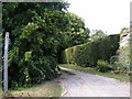 TM2665 : Footpath to World's End Road by Adrian Cable