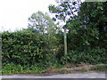 TM2665 : Footpath to Hill & Wood Farms & Peppers Wash by Adrian Cable