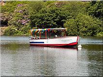 SJ9599 : Stamford Park Boating Lake, The Stamford Belle by David Dixon