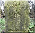 SE2432 : Detail of guidestone, Farnley by Humphrey Bolton