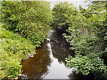 SD9701 : River Tame, Scout Green by David Dixon