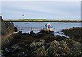 J5985 : Shoreline, Lighthouse Island by Rossographer