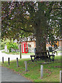 SP0849 : On the village green by Row17