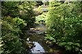 SH7972 : The River Hiraethlyn at Bodnant Garden by Jeff Buck