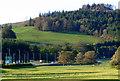 NS2172 : Field at Bridgend by Thomas Nugent