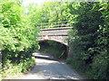 SP0173 : Barnt Green to Redditch Railway - Bridge Crossing Sandhills Green by Roy Hughes