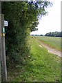 TM2864 : Footpath to the B1120 Badingham Road by Adrian Cable