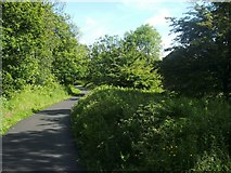 NS4174 : Cycle Route 7 at Dumbuck by Lairich Rig