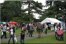 SP3165 : Leamington Peace Festival, 18-19 June 2011: 3/6 by Robin Stott