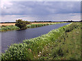 TA0852 : The Lower Section of the Driffield Canal by Andy Beecroft