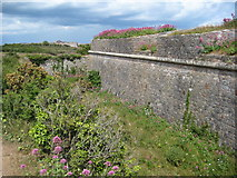 SX9456 : Southern Old Redoubt on Berry Head by Philip Halling