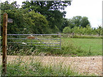 TG0424 : Restricted Byway at Keeling Hall by Adrian Cable