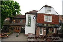 TQ4210 : The Dorset by N Chadwick