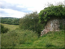 SO4430 : Ruins of Kilpeck Castle by Rob Purvis