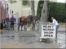 NT1473 : Heavy Horse Wash Area by Richard Webb