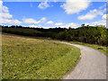 NZ1860 : Derwent Walk Country Park and Derwenthaugh Park by David Dixon