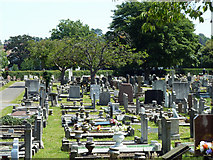 TQ6473 : Gravesend cemetery by Robin Webster