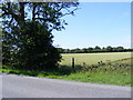 TL2765 : Bridleway to Papworth St Agnes by Adrian Cable