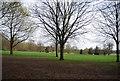 TQ1731 : Horsham Park by N Chadwick