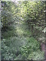 SE2029 : Line of Dismantled Railway - Bradford Road by Betty Longbottom