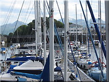 SH5638 : The Marina, Porthmadog harbour by Peter Turner