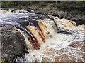 NY9027 : Low Force, River Tees by David Dixon