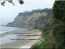 SZ5881 : Beach and cliffs, Shanklin by Malc McDonald