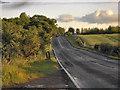 NZ2727 : Middridge Road by David Dixon