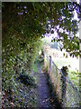 TM3864 : Footpath  to St.Peter's Church by Adrian Cable