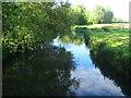 SU6759 : River Loddon by Lillymill Farm by Sandy B