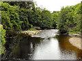 NY7708 : River Eden, Kirkby Stephen by David Dixon