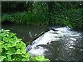 SU6859 : Weir on the river Loddon by Sandy B