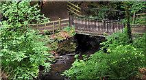 J4681 : Footbridge, Crawfordsburn Country Park by Albert Bridge