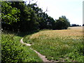 TM3864 : Footpath to Carlton Church by Geographer