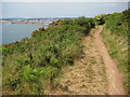 SX4851 : Coast path on Rams Cliff by Philip Halling